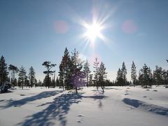 Wintersonne flickr (c) mPrinke CC-Lizenz